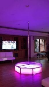 All Star Stages Pink Delight Portable STripper Pole in pool room